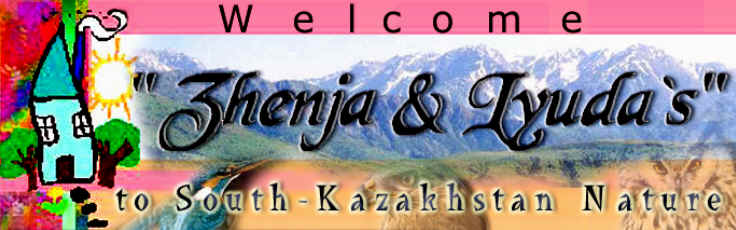 «Zhenja and Lyuda's boarding house» firm organizes excursions in the South-Kazakhstan nature